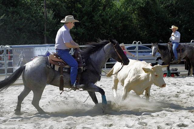 Cutting-Pferde auf der Eurocheval