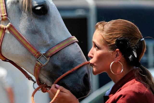 Die Eurocheval und der Kult um das Pferd