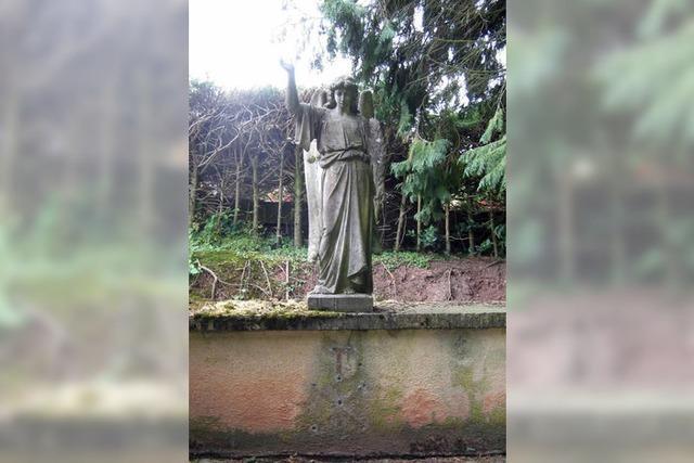 Friedhof der Nagetiere