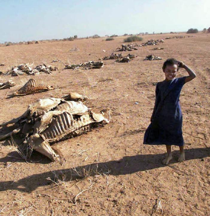 Dürre in Äthiopien  | Foto: afp