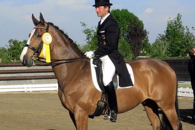 Olympiasieger reitet in der Dressur