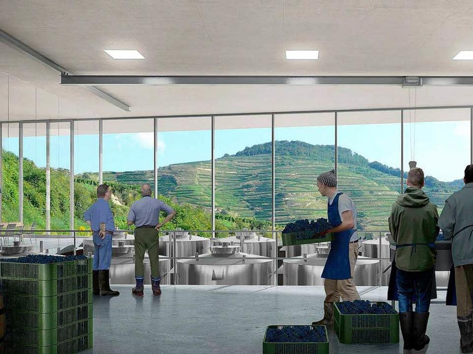 Modell vom Neubau des Weingutes Fritz Keller in Oberbergen  | Foto: Gerold Zink