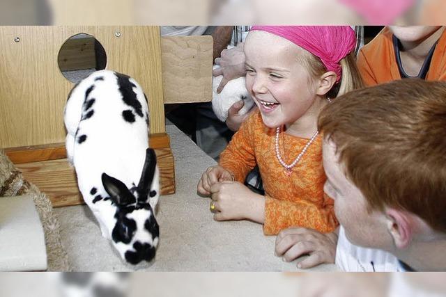 Großer Auftritt der Kaninchen
