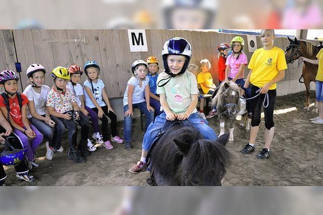Ein Tag im Pferdeparadies