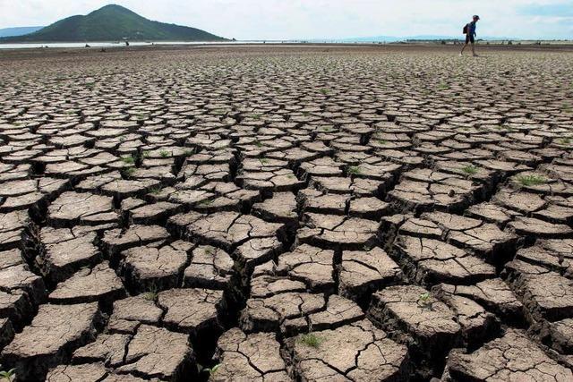 Die Welt will beim Klimaschutz nicht auf die USA warten