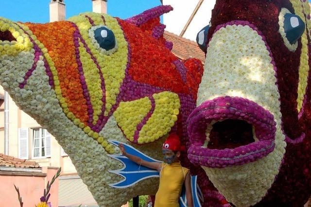 Fotos: Blumenkorso in Schlettstadt