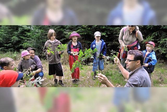 Mit dem Förster im Wald