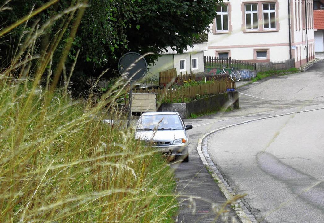 Ungemähte Böschungen und Straßenränder...nd manchen Bürgern ein Dorn im Auge.    | Foto: Manfred-G. Haderer