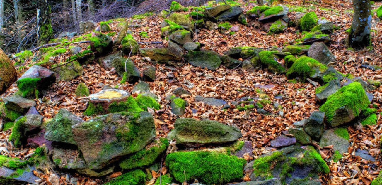 Kultstätte oder Burg? Die Rätsel um de...em Stockberg sind noch heute ungelöst.  | Foto: Birgit-Cathrin Duval