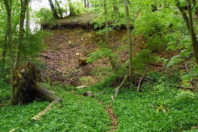 Der Leuengraben hat seinen Namen von den Römern