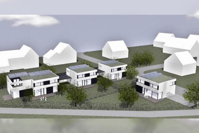 Bauprojekt nimmt Gestalt an