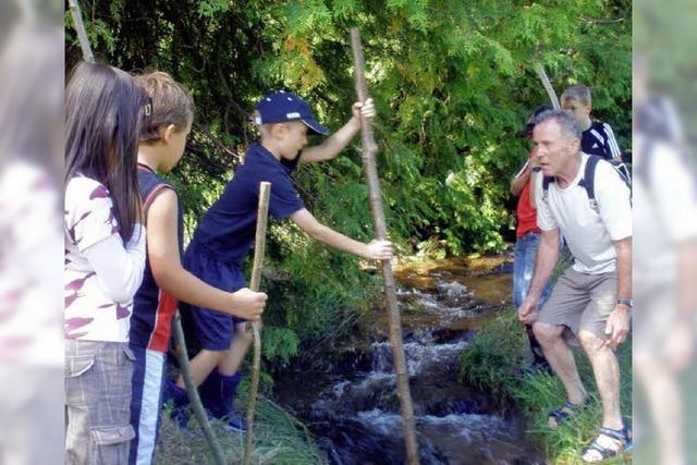 Kander und Maisenbach – ein nasses Abenteuer