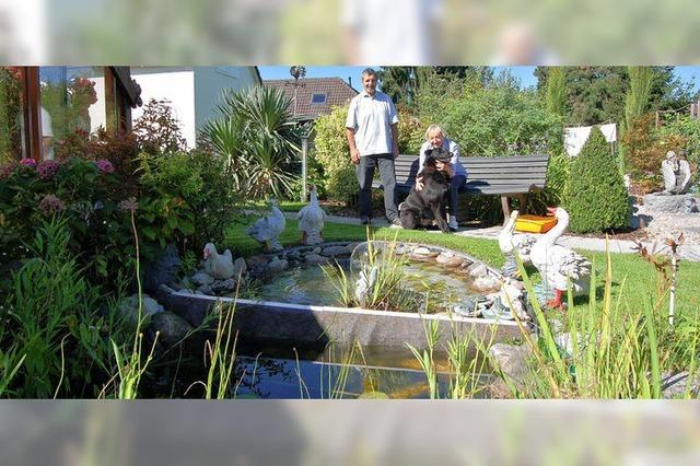 Preisgekrönter Garten der Vielfalt