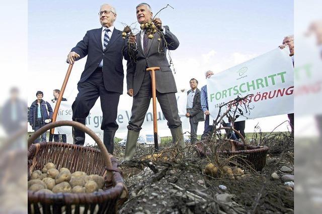 Genkartoffel bringt BASF in Bedrängnis