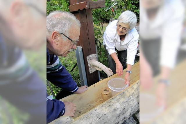 Liebfrauenbrunnen sprudelt wieder