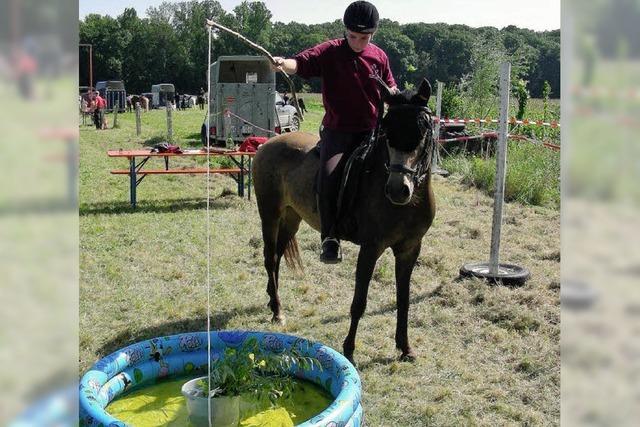 Angeln vom Rücken der Pferde aus