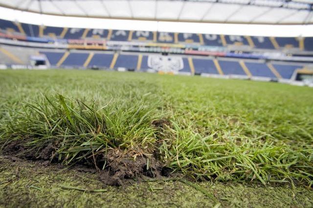 Frankfurt hat Probleme mit Verletzten – und dem Rasen