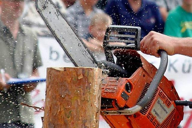 Stefan Eble ist der beste Holzfäller Europas
