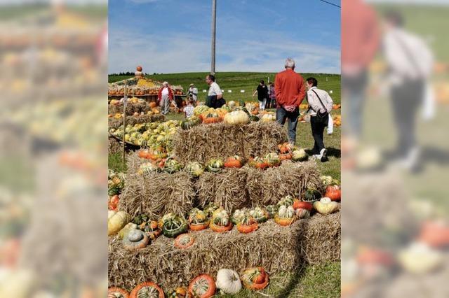 Bauernmarkt zieht 3000 Besucher an