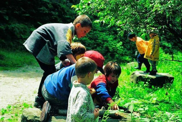 Vereinte Nationen zeichnen Ortenauer Naturschule aus