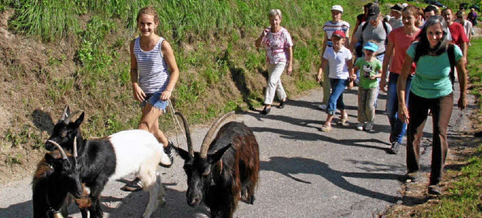 An der Leine von Lara führte die Ziege...freute sich über das große Interesse.   | Foto: herbert trogus