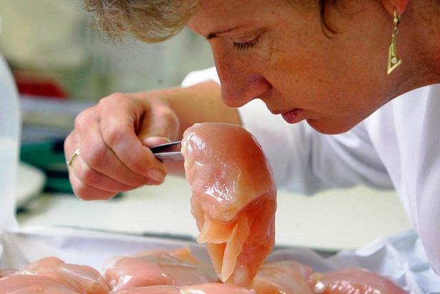 Freiburg: Kommt das Hygiene-Siegel für Restaurants?