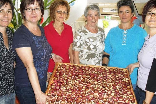 Obst entsteint und Zwiebeln gehackt