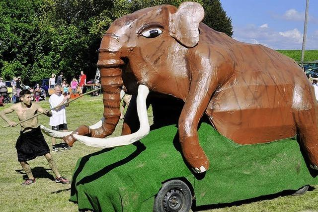 Auf dem schiefen Acker ging sogar das Mammut ab
