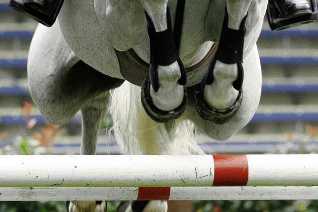 Der Rücken der Pferde macht immer weniger Reiter glücklich