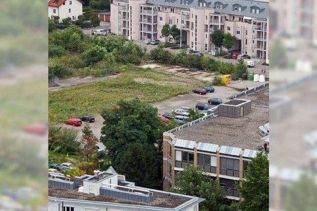 Neue Parkfläche entsteht
