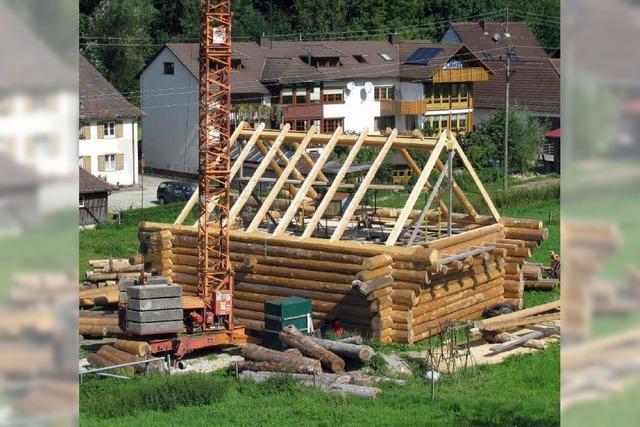 Ein Traumhaus aus 44 Tannenstämmen