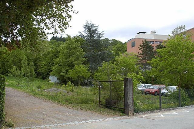 Grundstücke kommen bald auf den Markt
