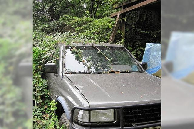 Entsorgung im Wald führt zu Ermittlungen
