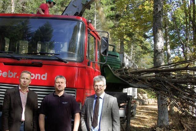 Dienstleister für Holzenergie