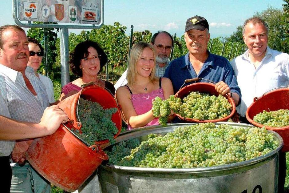 2006: Erste Weinlese mit der neuen Weinkönigin Isabell Kindle (Mitte). (Foto: Werner Bader)