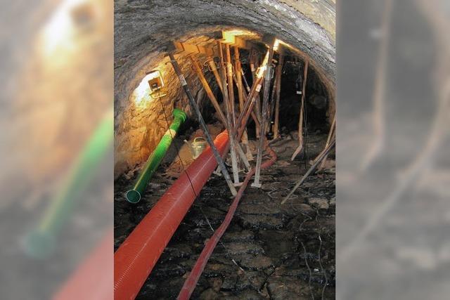 Überraschung im Untergrund
