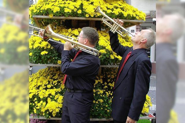 Blütenmärchen und Musik