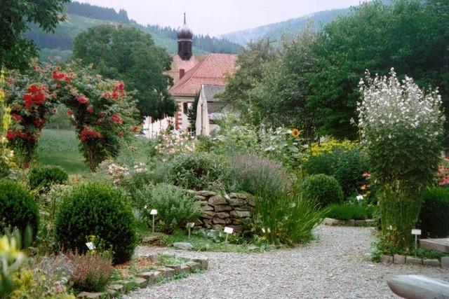 Lehrstunden im Kräutergarten