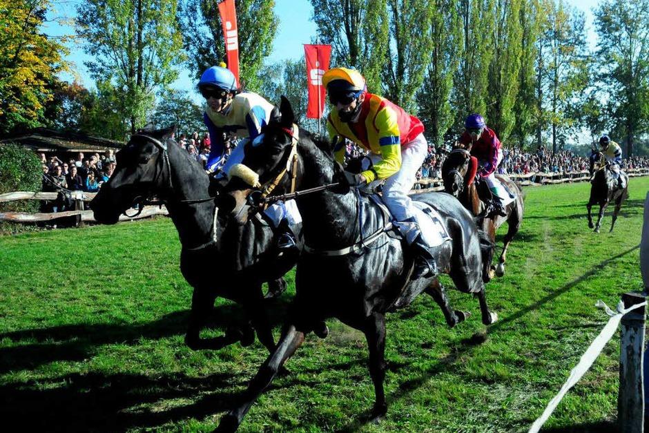 Das Pferderennen in Meißenheim (Foto: Wolfgang Künstle)