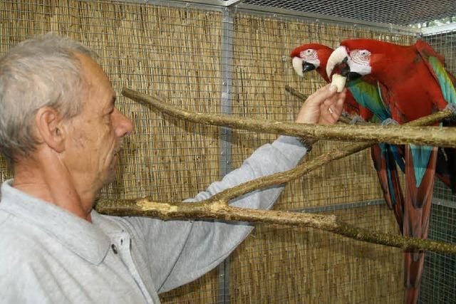 Drei Landessieger der Vogelfreunde