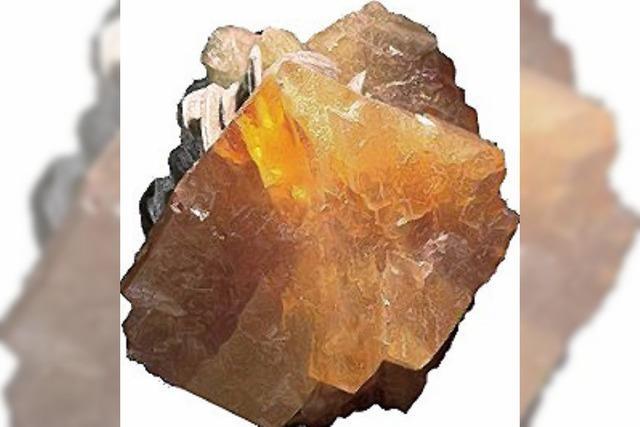 Fossilientage: Meteoriten und Mineralien
