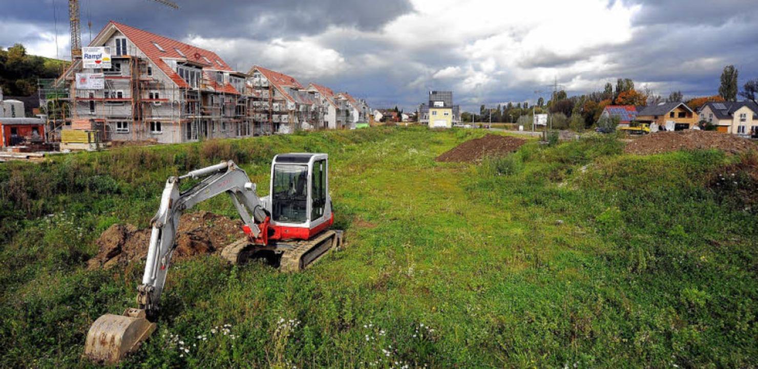 Ins Gras beißen muss noch so mancher B... Beinahe-Baustopp scheint überwunden.   | Foto: Kunz