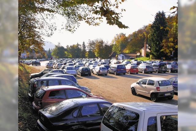 Bei Autofahrern sind vor allem Gratisparkplätze gefragt