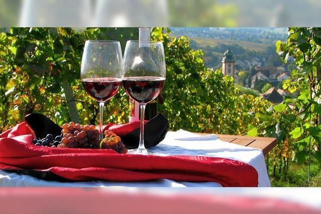 Gute Resonanz auf die Rotweinnacht
