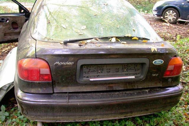 Zwei Autowracks im Wald entsorgt