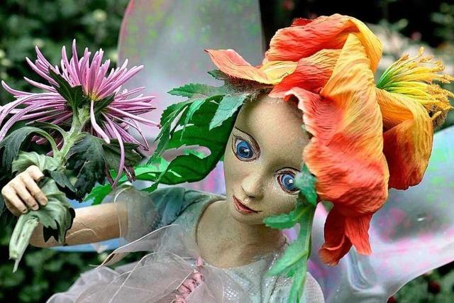 Fotos: Impressionen von der Chrysanthema in Lahr