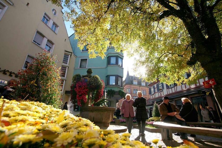 Impressionen von der Chrysanthema in Lahr. (Foto: Bastian Henning)