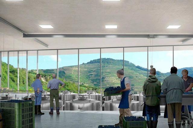 Grünes Licht für das neue Weingut von Fritz Keller