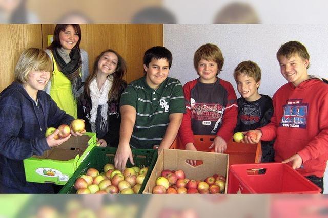 Äpfel halten Doktor fern
