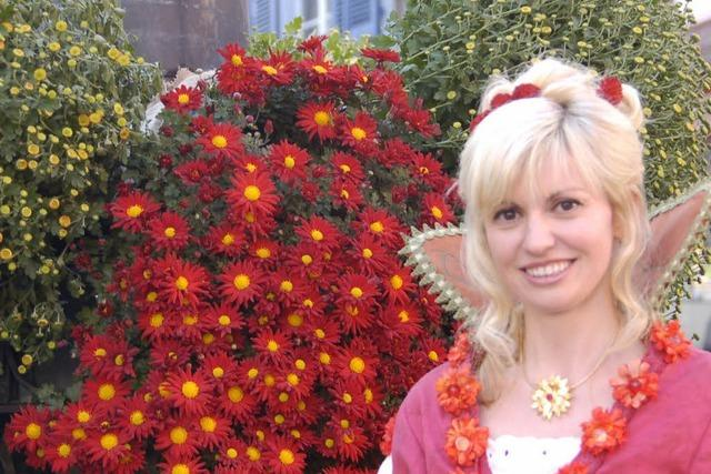 Chrysanthemenkönigin blickt zurück: